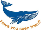 Hyannis Whale Watcher Cruises Promo Codes