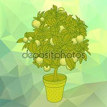 Lemon Citrus Tree Promo Codes